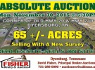 Absolute Auction: November 30th